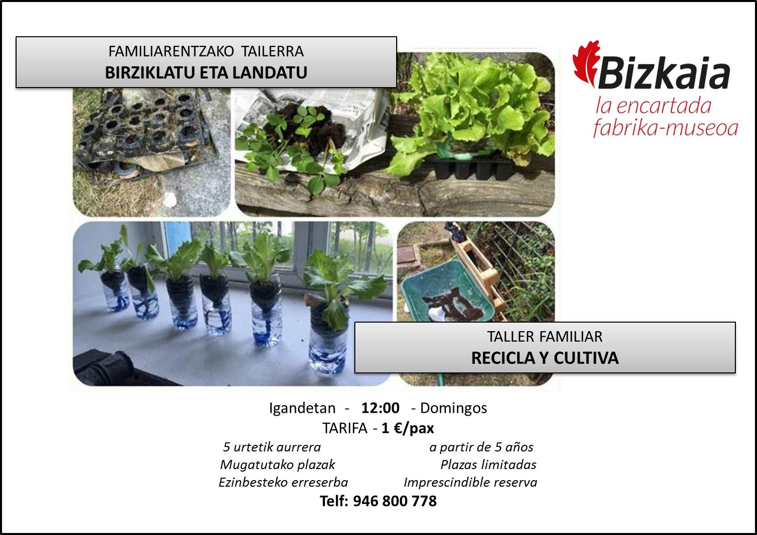 Taller familiar: Recicla y cultiva