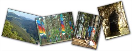 Paisaje del valle de Oma, árboles pintados y puerta de las cuevas de Santimamiñe