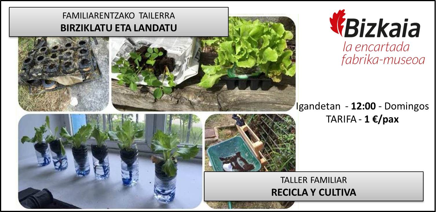 Taller familiar Recicla y Cultiva